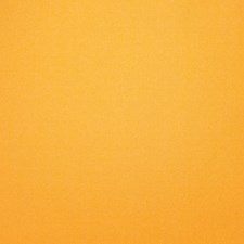 Island Orange Solid Decorator Fabric by Trend