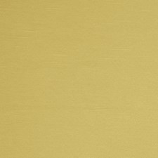 Verde Solid Decorator Fabric by Trend