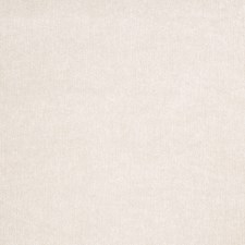 Greige Solid Decorator Fabric by Trend
