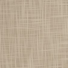 Buff Solid Decorator Fabric by Trend