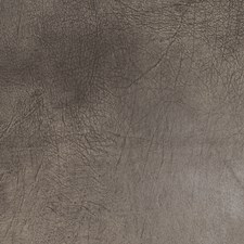 Cobblestone Solid Decorator Fabric by Trend
