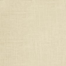Champagne Solid Decorator Fabric by Trend