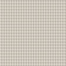 Moonstone Check Decorator Fabric by Trend