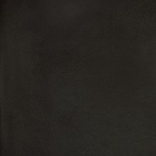 Black Solid Decorator Fabric by Greenhouse