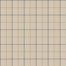 Blueberry Check Decorator Fabric by Trend