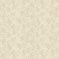 Shell Embroidery Decorator Fabric by Stroheim