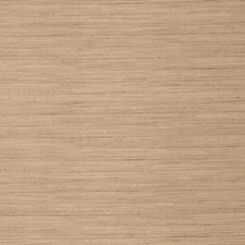 Seagrass Texture Plain Decorator Fabric by Trend