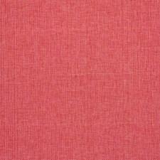 Rosa Decorator Fabric by Schumacher