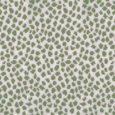 Sage Animal Skins Decorator Fabric by Brunschwig & Fils