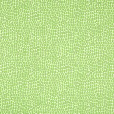 Kiwi Animal Skins Decorator Fabric by Brunschwig & Fils
