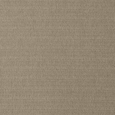 Rattan Solid Decorator Fabric by Trend