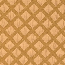 Sahara Contemporary Decorator Fabric by S. Harris