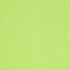Green Flash Solid Decorator Fabric by S. Harris