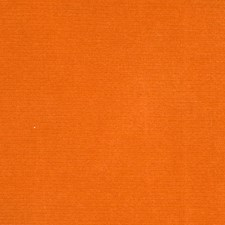 Apricot Solid Decorator Fabric by S. Harris