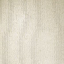 In The Buff Texture Plain Decorator Fabric by S. Harris