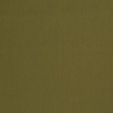 Olive Solid Decorator Fabric by S. Harris