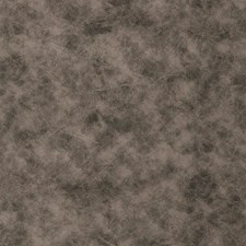 Fossil Solid Decorator Fabric by Trend