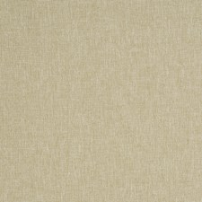 Hay Solid Decorator Fabric by Trend