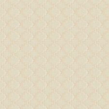Brulee Embroidery Decorator Fabric by Trend