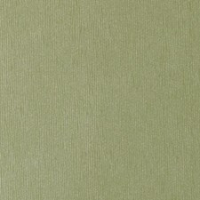 Celery Animal Skins Decorator Fabric by Duralee