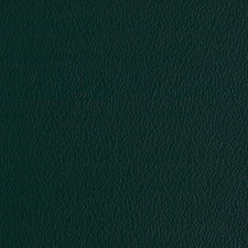 Yew Green Decorator Fabric by Greenhouse