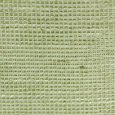 Touch Of Light Green Decorator Fabric by Scalamandre