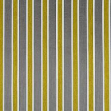 Little Miss Sunshine Decorator Fabric by Scalamandre