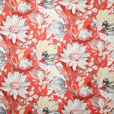 Cherry Traditional Decorator Fabric by Pindler