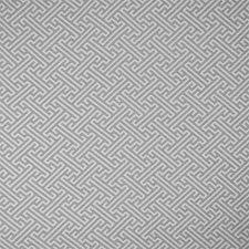 Mushroom Decorator Fabric by Silver State