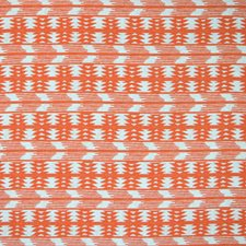 Tangerine Decorator Fabric by Silver State