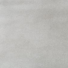 Silver/Light Grey Animal Skins Decorator Fabric by Kravet