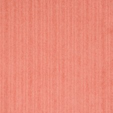 Rosebud Solid Decorator Fabric by Greenhouse