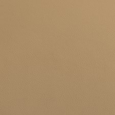 Tan Decorator Fabric by Silver State