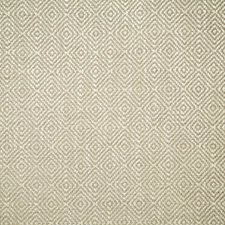 Birch Contemporary Decorator Fabric by Pindler