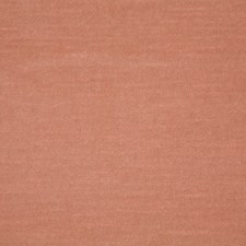 Blush Solid Decorator Fabric by Pindler