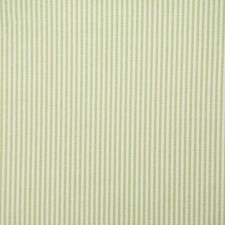 Celery Stripe Decorator Fabric by Pindler