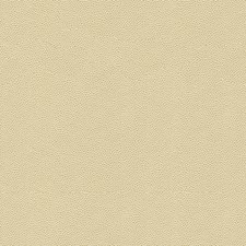 Beige/Ivory Texture Decorator Fabric by Kravet