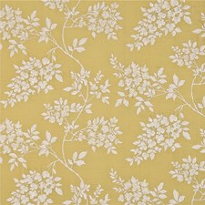 Mimosa Embroidery Decorator Fabric by G P & J Baker