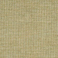 Silver Birch Solid W Decorator Fabric by G P & J Baker