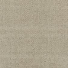 Silver Velvet Decorator Fabric by G P & J Baker