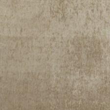Sand Velvet Decorator Fabric by G P & J Baker