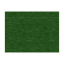 Spruce Velvet Decorator Fabric by Brunschwig & Fils