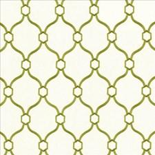 Grass Decorator Fabric by Kasmir