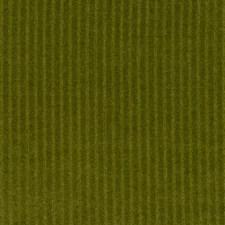 Tarragon Decorator Fabric by Robert Allen