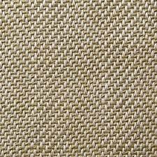 Vert Pale Decorator Fabric by Scalamandre