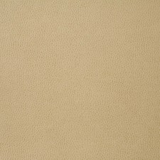 Sand Decorator Fabric by Pindler