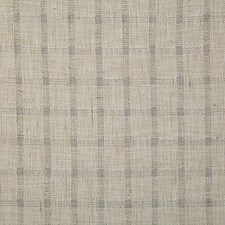 Zinc Check Decorator Fabric by Pindler