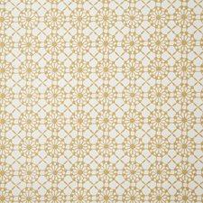 Dijon Ethnic Decorator Fabric by Pindler