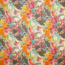 Rainbow Traditional Decorator Fabric by Pindler