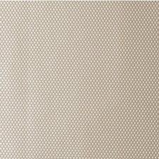 Mica Metallic Decorator Fabric by Kravet